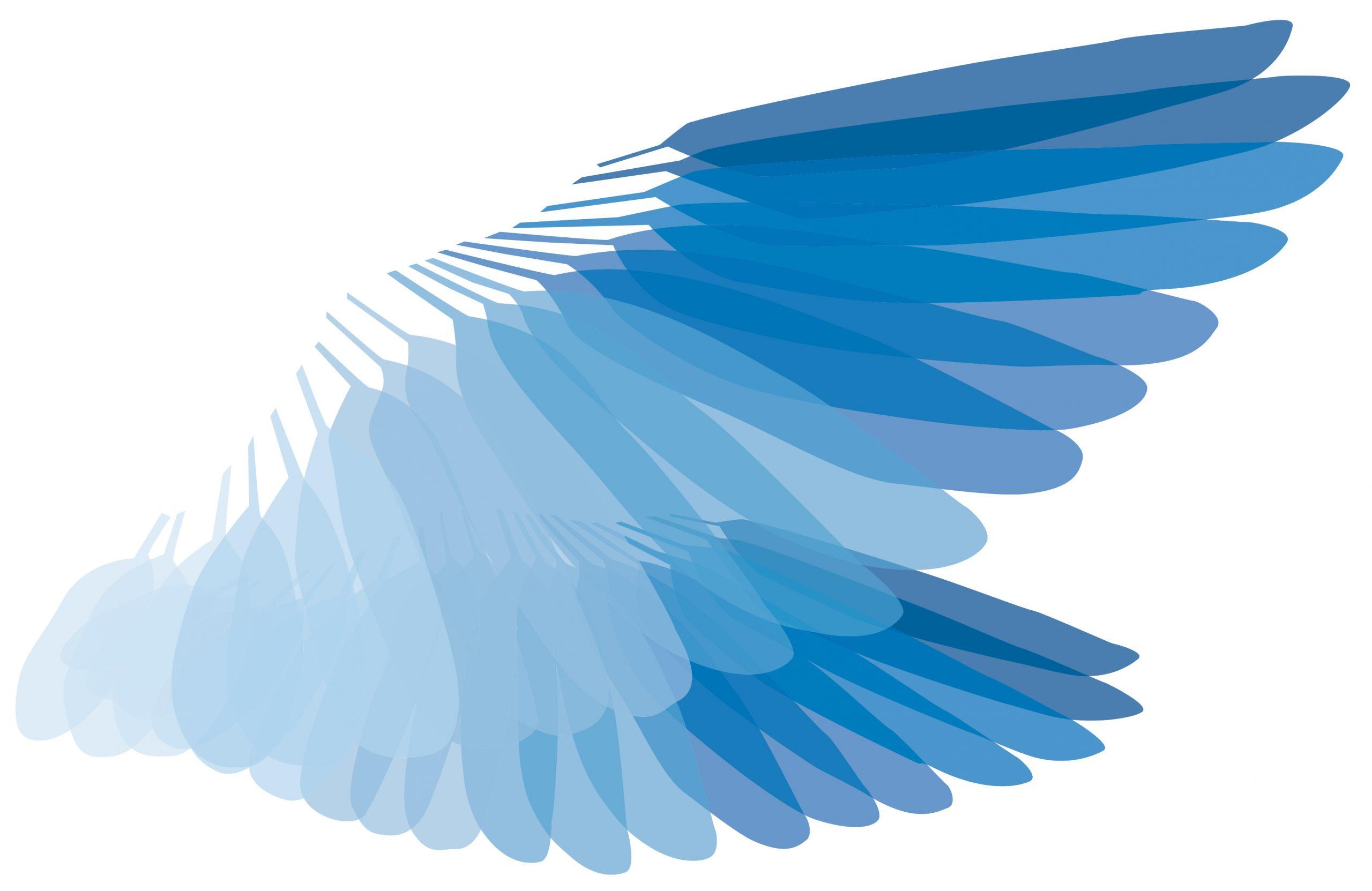 Logo der Jungen Akademie